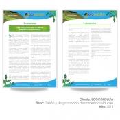 Tejido Creativo agencia de publicidad cali educacion y desarrollo  e-contenido ecoconsulta