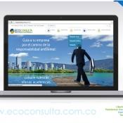 Pagina-web-Ecoconsulta