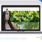 Pagina-web-Naprolab